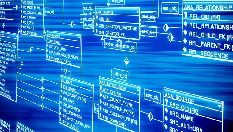 Kazino internetu programinė įranga